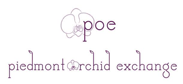 poe logo design