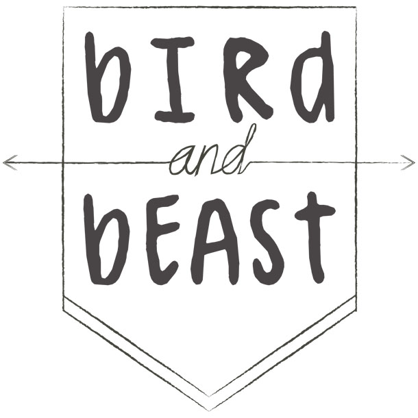 bird and beast band logo design